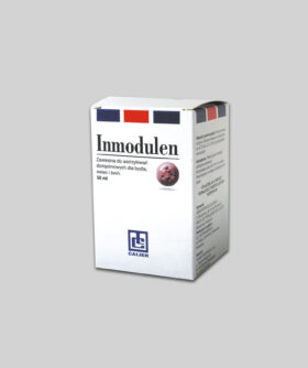 Inmodulen-BOX